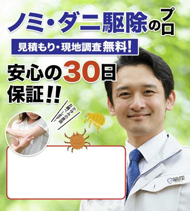 ノミ・ダニ駆除のプロ 見積・現地調査無料!安心の30日保証!!